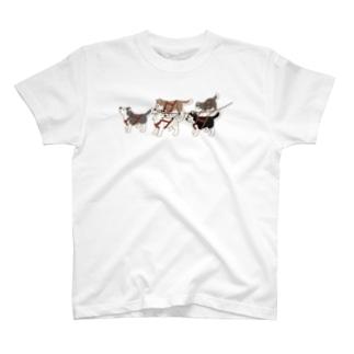 犬ぞりスタート前のハスキーズ2 T-shirts