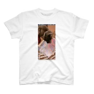 グレッチ T-shirts