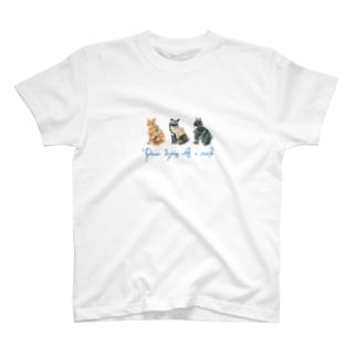 3匹の猫のTシャツ T-Shirt