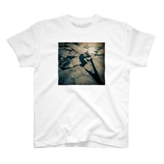 斜陽 T-shirts