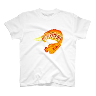 ピラルク ドット T-shirts