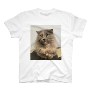 サビ猫はなちゃん T-shirts