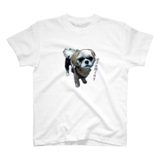 置いてかれるのを察知するレオくん T-shirts