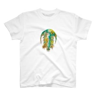 Paradoxides T-shirts