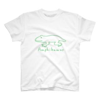 アンフィバムス カエル T-shirts