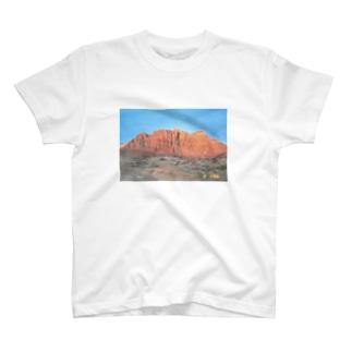 Mounment T-shirts