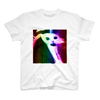 無敵のとべ猫 T-shirts