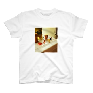 Collections T-shirts