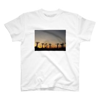 バオバブの並木 T-shirts