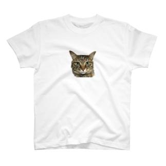 たつえさんシリーズ T-shirts
