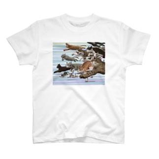 スタートダッシュ T-shirts