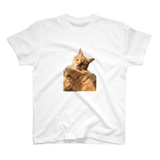 お昼寝茶トラ猫 T-shirts