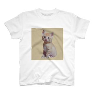 天使な茶トラ猫 T-shirts