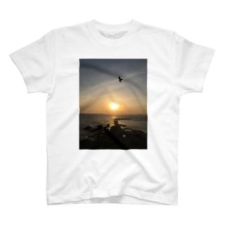 サンセット➕トンビ T-shirts