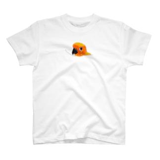 愛鳥コガネメキシコインコちゃん T-shirts