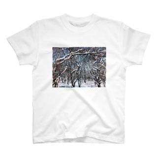 もじゃの雪山サンダル T-shirts