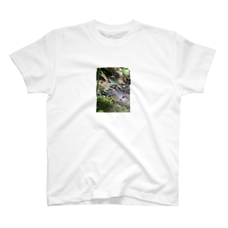 毒々しいカエル T-shirts