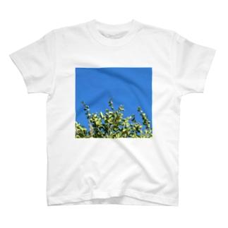 無糖のあ T-shirts