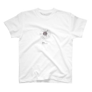 おひつじ座の誕生花 ガーベラ T-shirts