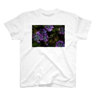 stretch324の紫陽花 T-shirts