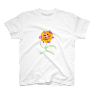 バイヤー高橋です。の花グリア T-shirts