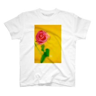 *KaO*イロトリドリのyellow* T-shirts