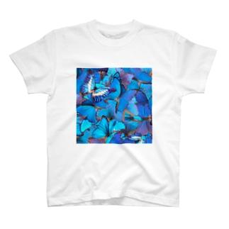 モルフォ真四角 T-shirts