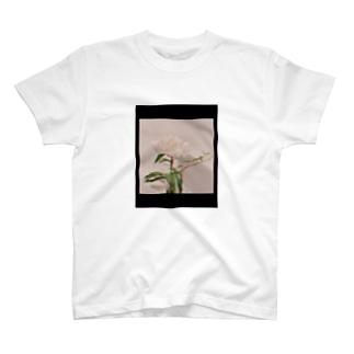 しゃくやくさんとアイビーちゃん T-shirts