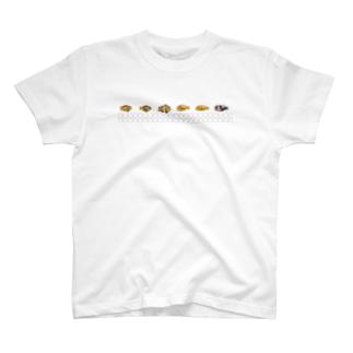 くまのみ6種盛り T-shirts
