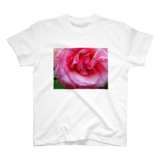 恋近し T-shirts