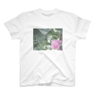 薔薇Tシャツ T-shirts