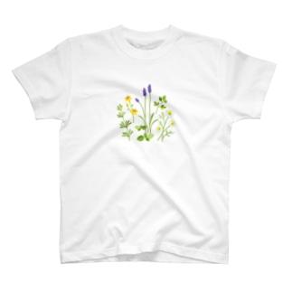 ypocketのハーブの図鑑 T-shirts