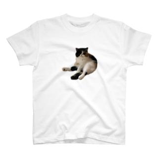 くあ T-shirts