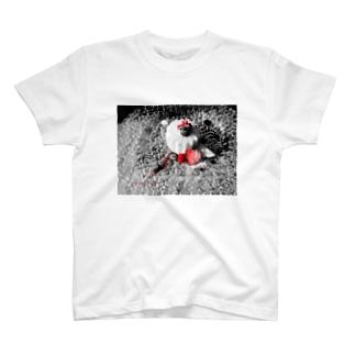 モノクロ×赤い果実 T-shirts