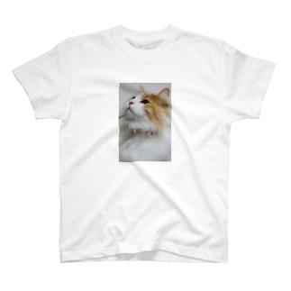 気品溢れるレオ様 T-shirts