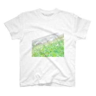 芝生 四つ葉のクローバー お花 T-shirts