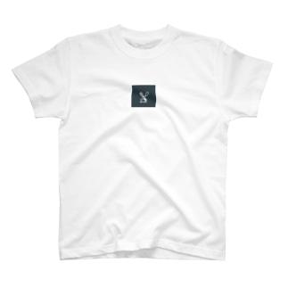Grazie T-shirts