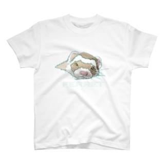 うとうとフェレット  T-shirts