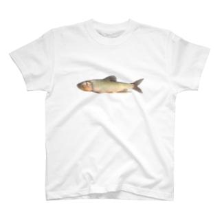 みなたびのハス T-shirts