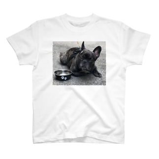 ブリンドル T-Shirt