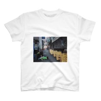 _(:3」∠)_ T-shirts