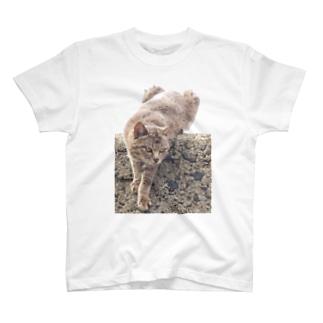 野性 T-shirts