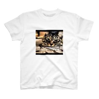 chirobeeオリジナル T-shirts