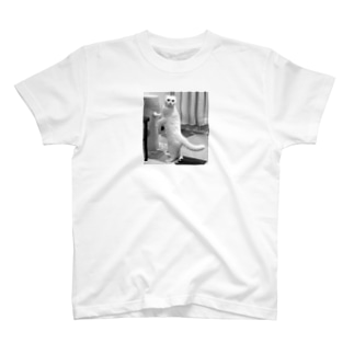 モデル気取り猫 T-shirts
