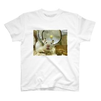 もち T-Shirt