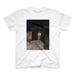 警戒のらねこ T-shirts