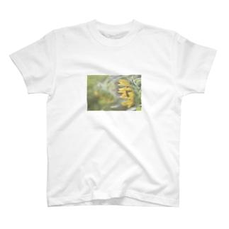 淡い夏 T-shirts