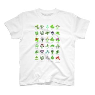 ざおうハーブイラストシリーズ T-shirts