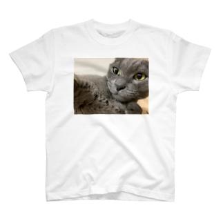 エロいミー T-shirts