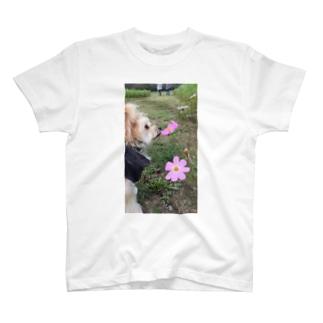 とらじろうくん T-shirts